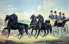 Four-in-Hand Stallion Team