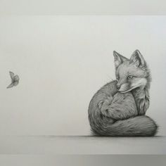 """Intrigue"" by Kerry Jane. Fox cub, pencil drawing"
