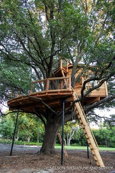 Quercus Treefort-icus Treehouse - Pete Nelson - Nelson Treehouse and Supply