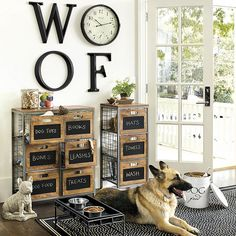dog corner ideas Our Cambridge Storage Cabinet is perfect for storing pet supplies and any other miscellaneous items you might have around your pantry or laundry room. Dog Storage, Stuffed Animal Storage, Diy Stuffed Animals, Storage Shelves, Storage Ideas, Animal Room, Animal Decor, Dog Room Decor, Dog Cat