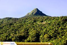 Adam's Peak, Sri Lanka    |    Book Now:  https://www.taprobanetravel.co.uk/?utm_source=pinterest&utm_campaign=adams-peak-sri-lanka&utm_medium=social&utm_term=taprobane-travel |  #traveller #travelling #srilanka #taprobanetravel #adamspeak #bestdestination #bestplacetotravel #bookflghts #travel #flights #cheapflightstosrilanka #asia #bookcheapflights #booknow #callnow #cheapflights #traveldiaries #traveladdict #travelpics #travelblogger #travellife #travelphoto #travelblog #travelstoke l