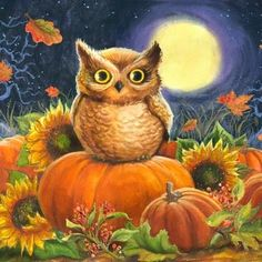 Image result for drawings of pumpkins and owls