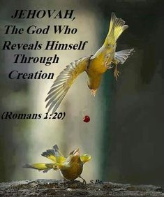 Romans 1:20 For his invisible qualities are clearly seen from the world's creation onward, because they are perceived by the things made, even his eternal power and Godship, so that they are inexcusable.