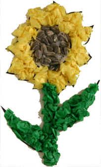 Sunflower Craft! Print sunflower outline and glue onto blue cardstock. Kids glue on tissue paper and sunflower seeds.