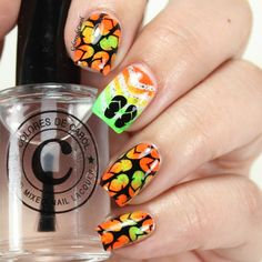 ÜberChic Beauty Collection 9 | Colores de Carol | Bloglovin'