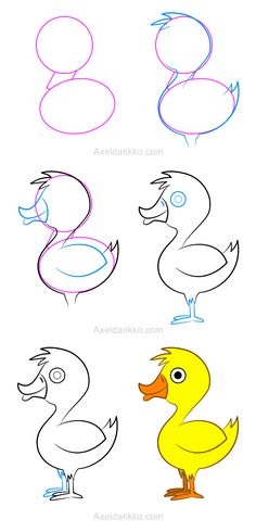 How to draw a duck - Comment dessiner un canard