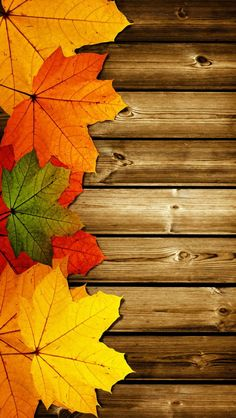 Autumn Leaves and Wood Wallpaper Wallpaper Texture, Wood Wallpaper, Nature Wallpaper, Mobile Wallpaper, Fall Leaves Wallpaper, Fall Leaves Background, Pretty Backgrounds, Phone Backgrounds, Wallpaper Backgrounds