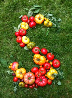 2013 Harvest ! Letter S with tomatoes