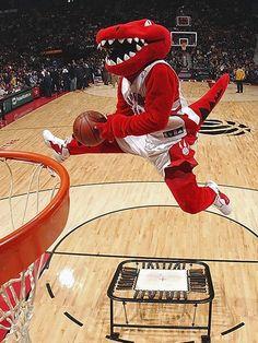 What it feels like to be the Raptor, Toronto's NBA mascot Nba Basketball Teams, Basketball Video Games, Basketball Design, Basketball Legends, Basketball Uniforms, Sports Teams, Toronto Raptors, But Football, Nba Pictures