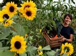 More women finding passion as small scale, organic farmers Finding Passion, American Agriculture, Farm Women, Female Farmer, Farm Business, Diy Fence, Hobby Farms, Flower Farm, Organic Vegetables