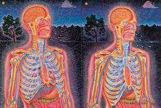 O antigo sistema indiano de yoga identificou o poder da respiração e aumentou sua eficiência através do desenvolvimento do pranayama, técnic...