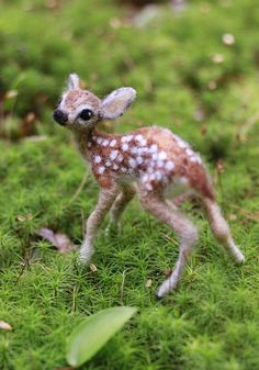 Hey, I found this really awesome Etsy listing at https://www.etsy.com/listing/270234364/resered-for-teresa-needle-felted-fawn