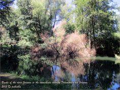 Henares countryside. Jarama River. Talamanca del Jarama. Spain
