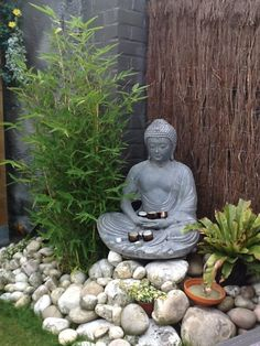 Meditation in the garden