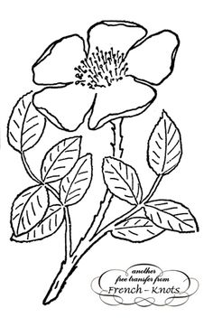 rose embroidery transfer