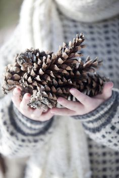 A handful of pine cones, placed on a table or bookcase, can add a natural touch to holiday decor.....
