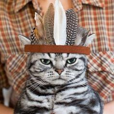 """""""I shall attend your festivities. But I will practice my right to not enjoy them. That said, yes, I will have more gravy."""" 