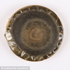 Fungus from Sir Alexander Fleming's antibiotic research to go under the hammer Alexander Fleming, Under The Hammer, Pie Dish, Fungi, Mail Online, Daily Mail, Things To Sell, Mushrooms
