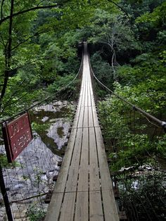 fall creek falls tennessee | suspension bridge over cane creek cascades fall creek falls state park ...