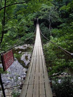 fall creek falls tennessee | suspension bridge over cane creek cascades fall creek falls state park ...
