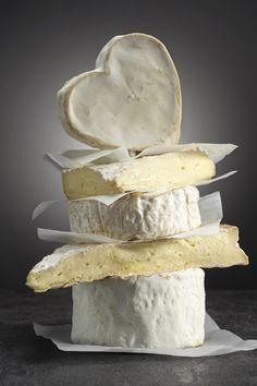 Cheese - Kaas
