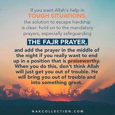 hijazi on islam Hadith Quotes, Allah Quotes, Muslim Quotes, Religious Quotes, Hindi Quotes, Islam Hadith, Islam Muslim, Islam Quran, Alhamdulillah