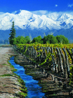 Mendoza Province, Argentina vineyard with river and mountain Chile, Amalfi Coast Italy, Going On Holiday, Positano, Vintage Travel Posters, Amazing Destinations, Photo Tips, Wine Tasting, More Photos