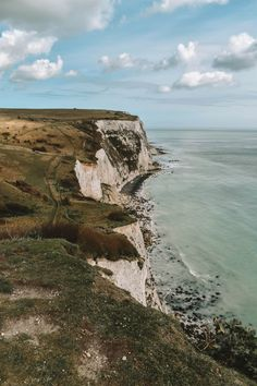 Southern England Itinerary: A Storybook Road Trip - From Sussex, Cornwall, Devon, Somerset, Cotswolds and many more you'll fall in love with England in a whole new way! Places To Travel, Places To Visit, England Countryside, Provence, Travel Aesthetic, Aesthetic Fashion, Aesthetic Dark, Aesthetic Vintage, Voyage Europe
