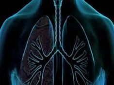 Many people live their lives with healthy lungs and always fall prey to respiratory problems, and others smoke for 45 years, and there are still. Not bring more mysteries than a regime of 3 days to give your lungs cleaning need. Health Benefits, Health Tips, Health Blogs, Clean Lungs, Best Way To Detox, Green Tea Benefits, Detox Program, Respiratory System, Sports Medicine