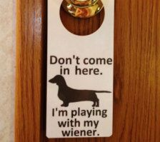Funny Dog Photo: Don't come in here. I'm playing with my wiener. Etsy...Hilarious