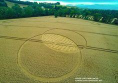 Crop Circle at Fox Hill, nr Liddington, Wiltshire, United Kingdom. Reported 9th August 2015