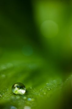 drop by Sebastian Raab on 500px
