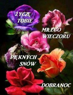Добраніч Flowers, Plants, Nova, Polish Sayings, Photo Illustration, Florals, Planters, Flower, Blossoms