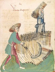 Konrad von Megenberg Das Buch der Natur — Hagenau - Werkstatt Diebold Lauber, um 1442-1448? Cod. Pal. germ. 300 Folio 309r