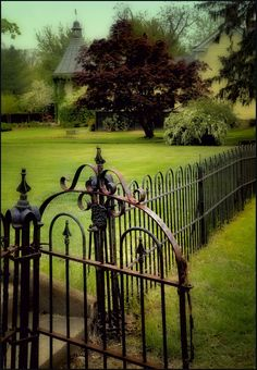 Wrought iron gate and fence. Garden Gates And Fencing, Fence Gate, Horticulture, Old Gates, Virginia, Wrought Iron Fences, Grades, Beaux Villages, My Secret Garden
