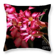 """Desert Rose"" © E. B. Schmidt. All Rights Reserved. Floral art decor throw pillow. (Available as prints, canvas, metal, and more.) www.ebschmidt.com #art #schmidt #flowers #FloralDecor #dessertrose #roses"