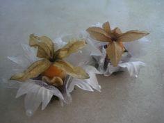 Forminhas para doces finosObra de Arte: Forminha aramada C011
