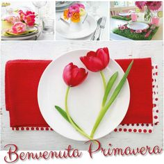 Finalmente sei arrivata #primavera!!! #byebyeinverno #ciseimancata #bentornata  welcome spring