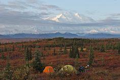 Alaska - weltreisewelt Indian Summer, Alaska, Fjord, Mountains, Nature, Travel, National Forest, Naturaleza, Viajes