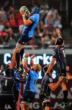 South African Rugby, Towers, Punk, Blue, Style, Fashion, Swag, Moda, Tours