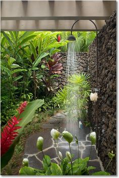 Private Outdoor Lava Shower Garden...love this.