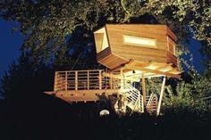 Architekten entdecken ihre Liebe zu Baumhäusern: Oben wohnen - WELT
