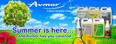 Summer Cleaning made Simple with Avmor!   http://p0.vresp.com/U7siQl #vr4smallbiz http://fb.me/1CXvrhODr