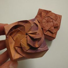 This twisted box has inspired me to explore the use origami-like features as a means of in a more decorative means.
