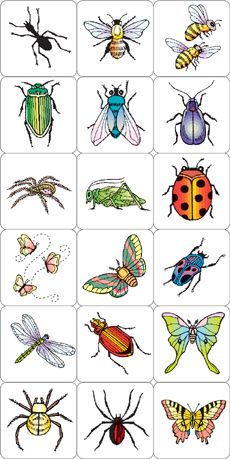 INSECTS AND SPIDERS ARTHROPOD STAMPING KIT.
