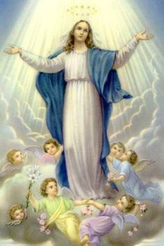 The Blessed Virgin Mary  May is the month of Mary.
