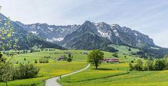 Kaisergebirge bei Walchsee/Österreich