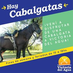 #Cabalgatas en #VictoriaDelAgua