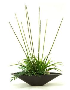 Bamboo and Greens Plant by CORT -- Perfect for the corner of a small apartment.   CORT.com