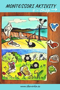 Montessori, Thing 1, Comic Books, Comics, Cover, Cartoons, Cartoons, Comic, Comic Book